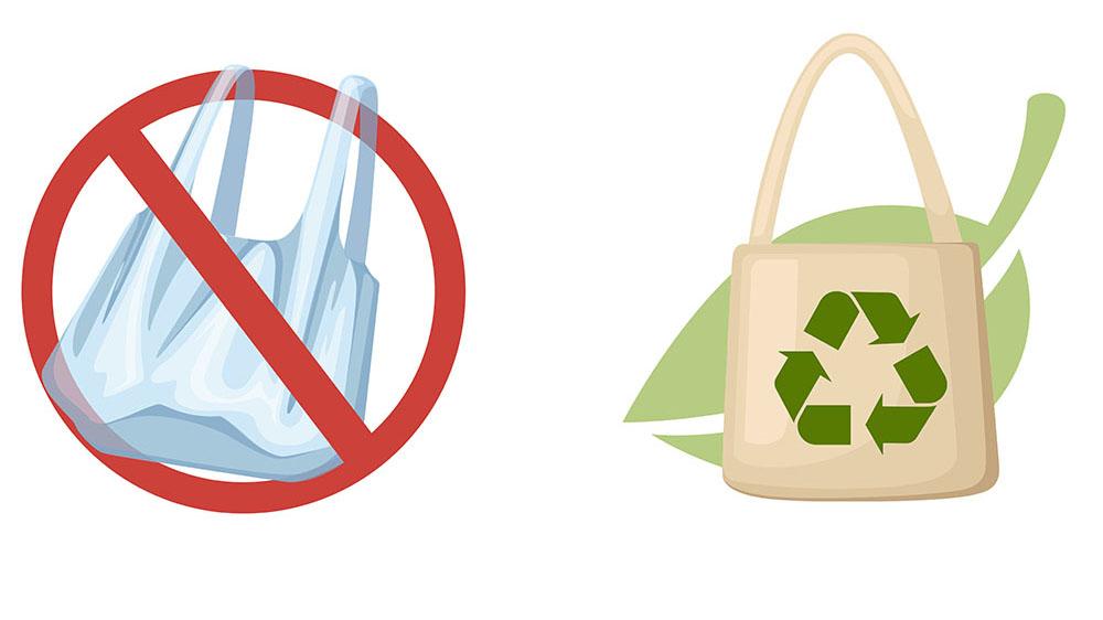 Nhựa nào an toàn không độc hại